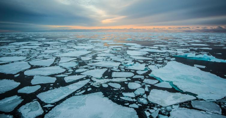 Gelo no Ártico volta a atingir níveis mais baixos desde que há registos
