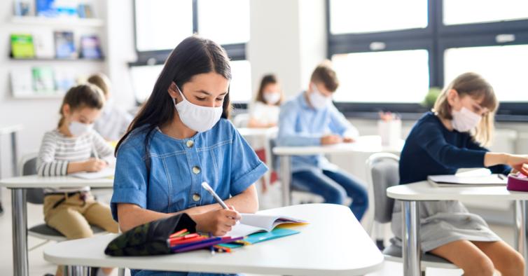 DGS vai fixar novas regras para testagem em escolas e empresas