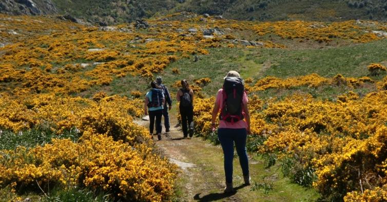 Vem aí uma caminhada para descobrir o pequeno Tibete português