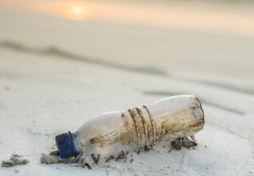 Estudo alerta: os oceanos estão a ser inundados com embalagens de take-away