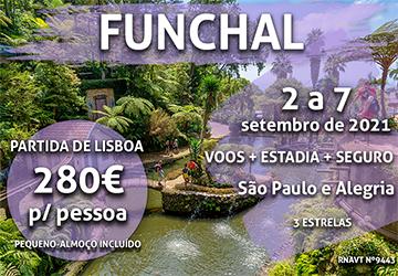 Parece um sonho, mas não é: esta viagem para a Madeira custa mesmo 280€ por pessoa