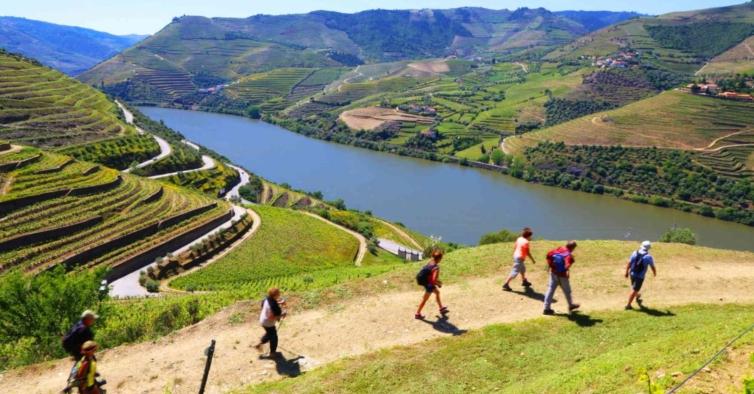 Passeios de balão e a cavalo: estas são as experiências mais incríveis do Douro