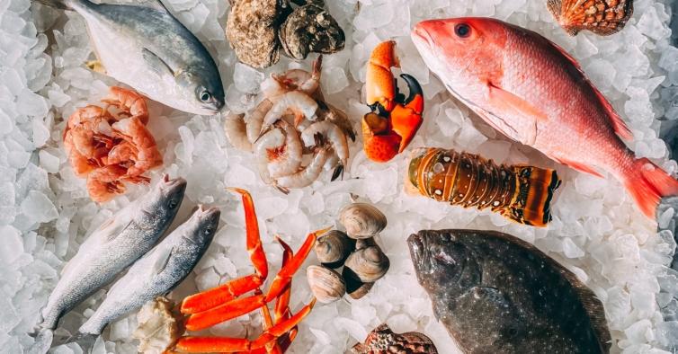 Neste festival do peixe em Sesimbra pode ganhar vales de 100€