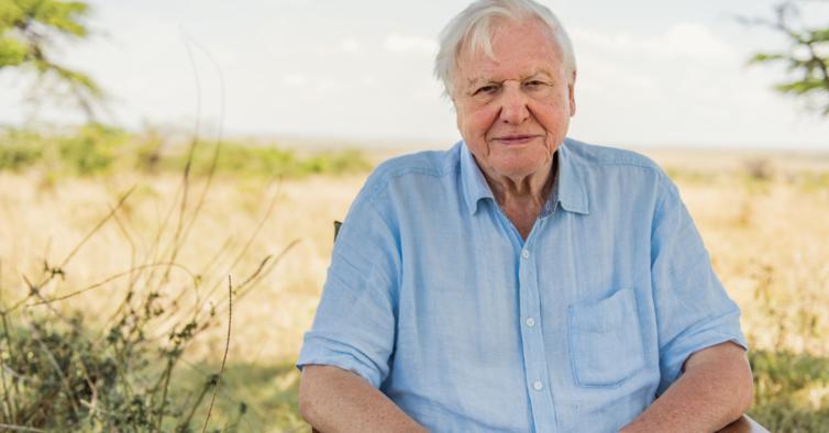 """""""Quando o David Attenborough disse o meu nome no documentário… Uau!"""""""