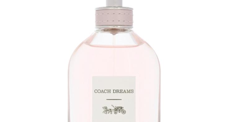 Coach Dreams (34,5€)