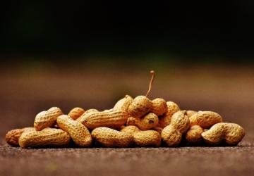 O amendoim em pó tornou-se um dos mais inesperados sucessos da Mercadona